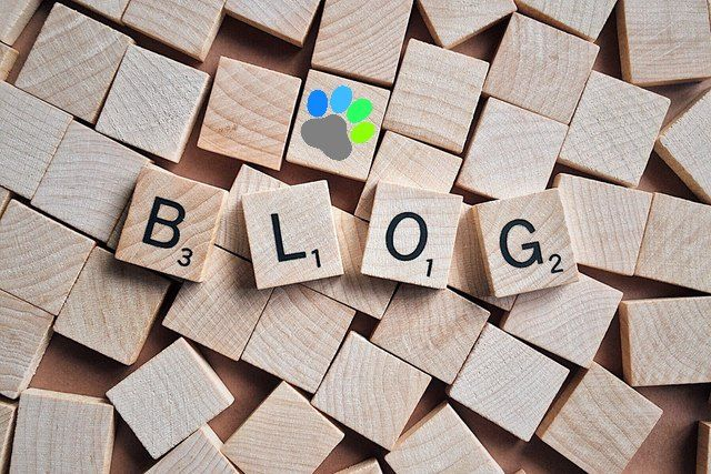 blog-happypattes-lettres-en-bois