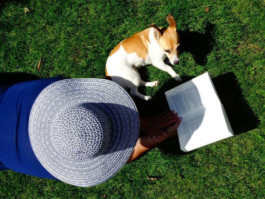Le petsitteur et un chien lisent pendant une promenade au parc de Gerland.