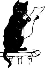 chat-etudie-liste-soins